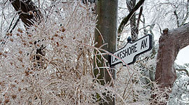Lakeshore Ave, Ward's Island, Toronto Islands