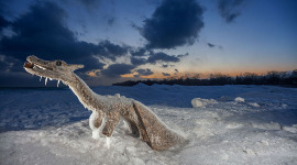 Log Ness Monster entombed in ice, Ward's Island, Toronto Islands