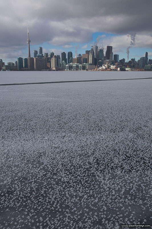 Frost flowers cover the frozen inner harbour, Ward's Island, Toronto Islands