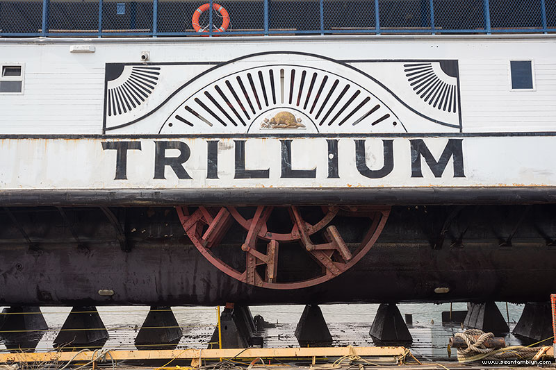 Toronto ferry Trillium self-feathering paddle wheel
