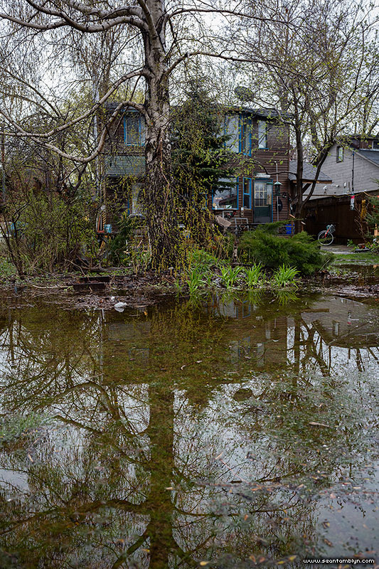 Lake Ontario encroaches on 21 Third St., Ward's Island, Toronto Islands