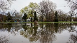 Lake Ward's is back, Ward's Island, Toronto Islands