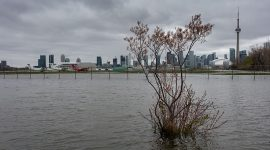 Water floods the perimeter fence, Toronto City Center Airport, Toronto Islands