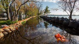 Flooded Seneca Ave, Algonquin Island, Toronto Islands
