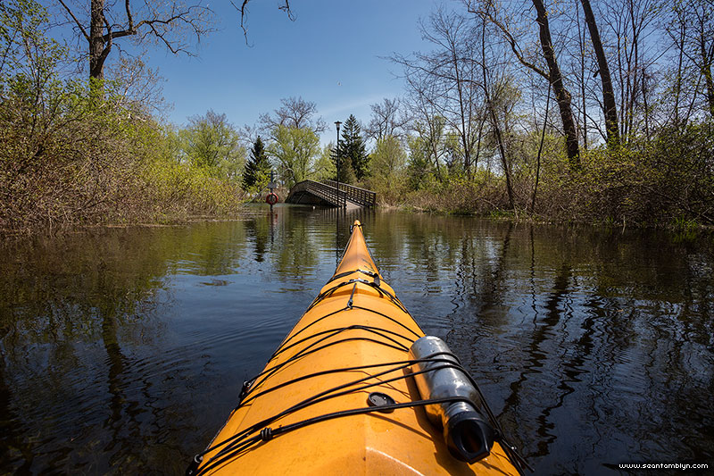 Kayaking over Snake Island, Snake Island, Toronto Islands