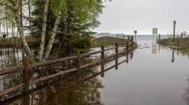 Flooded walkway, Ward's Beach, Toronto Islands