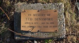 Memorial plaque for Ted Dinsmore, Centre Island, Toronto Islands
