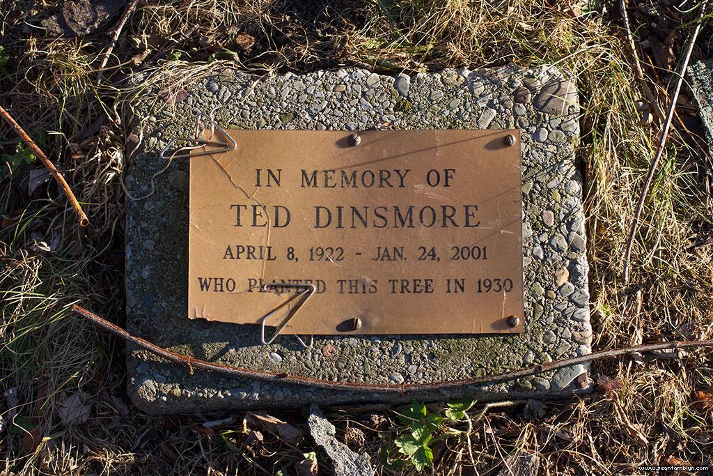 Memorial plaque for Ted Dinsmore, Centre Island, Toronto Islands