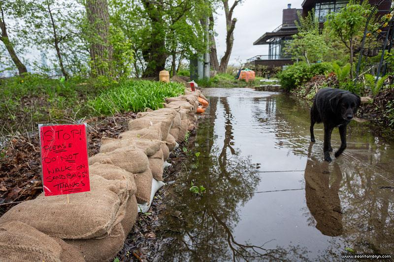 Please do not walk on the sandbags sign, Ward's Island, Toronto Islands