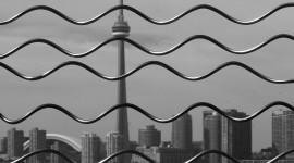 Joseph Muscat, Make Waves, Rogue Wave 2007, Toronto Islands