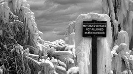 Ice covered sign, Centre Island, Toronto Islands