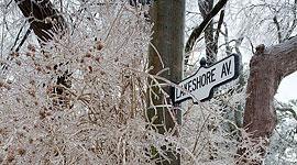 Lakeshore Ave, Ward's Island, Toronto Islands