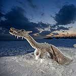 Log Ness Monster entombed in ice, Ward's Island, Toronto Islands