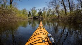 Kayaking over Snake Island, Snake Island, Toronto Islands