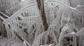 Ice formations on the boardwalk, Center Island, Toronto Islands